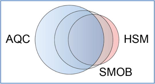 SMOB -‐ unHSM-Filter als Ergänzungen des AQC-Fragebogens